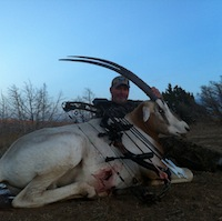 Larry's 35-inch Scimitar Horned Oryx